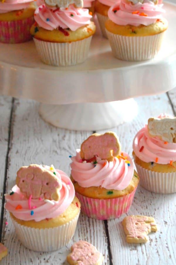 cupcake recipe ideas that are easy