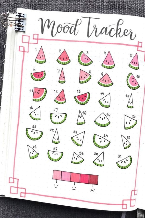 june watermelon bullet journal