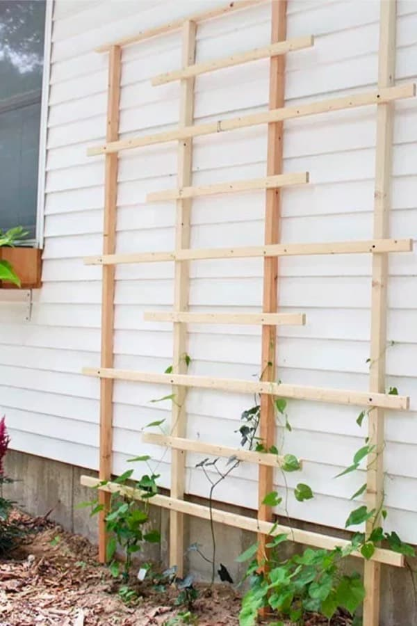 easy diy garden trellis ideas