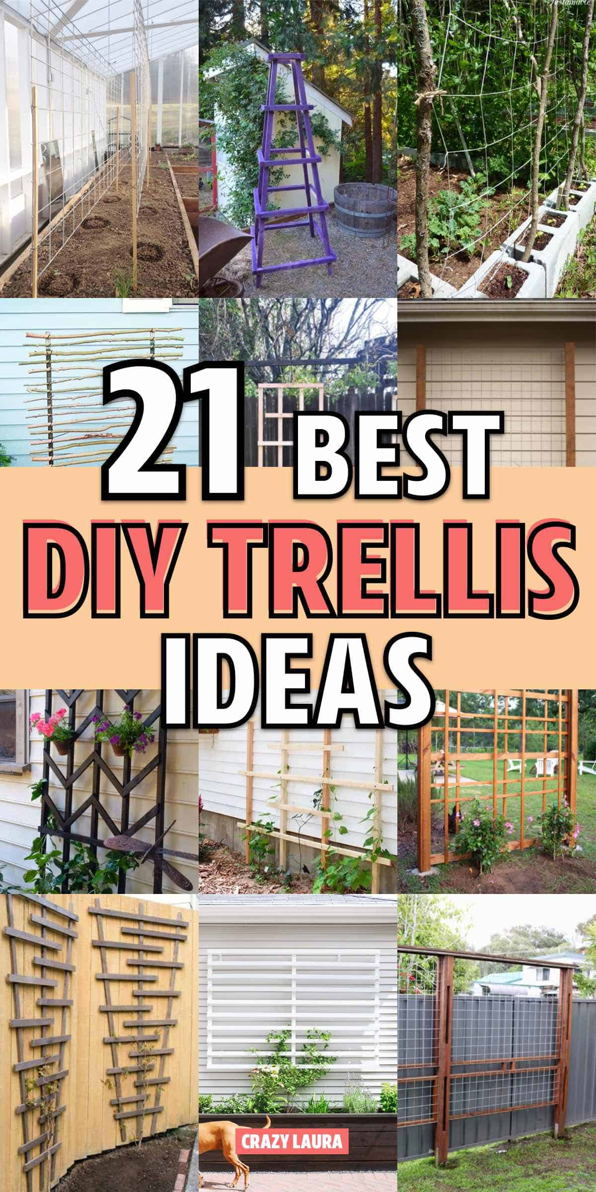 easy backyard trellis ideas