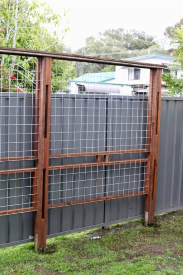 trellis fence ideas