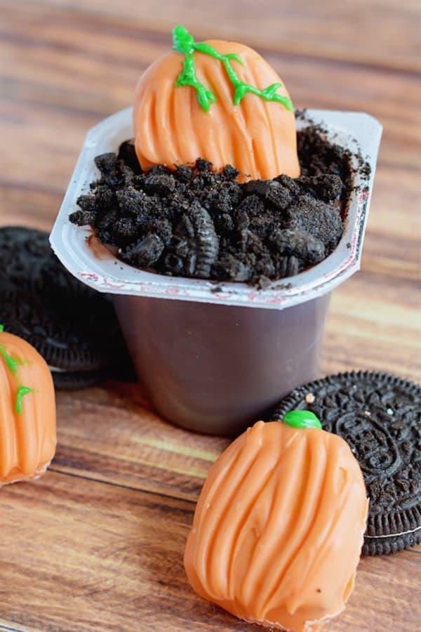 pumpkin pudding dessert