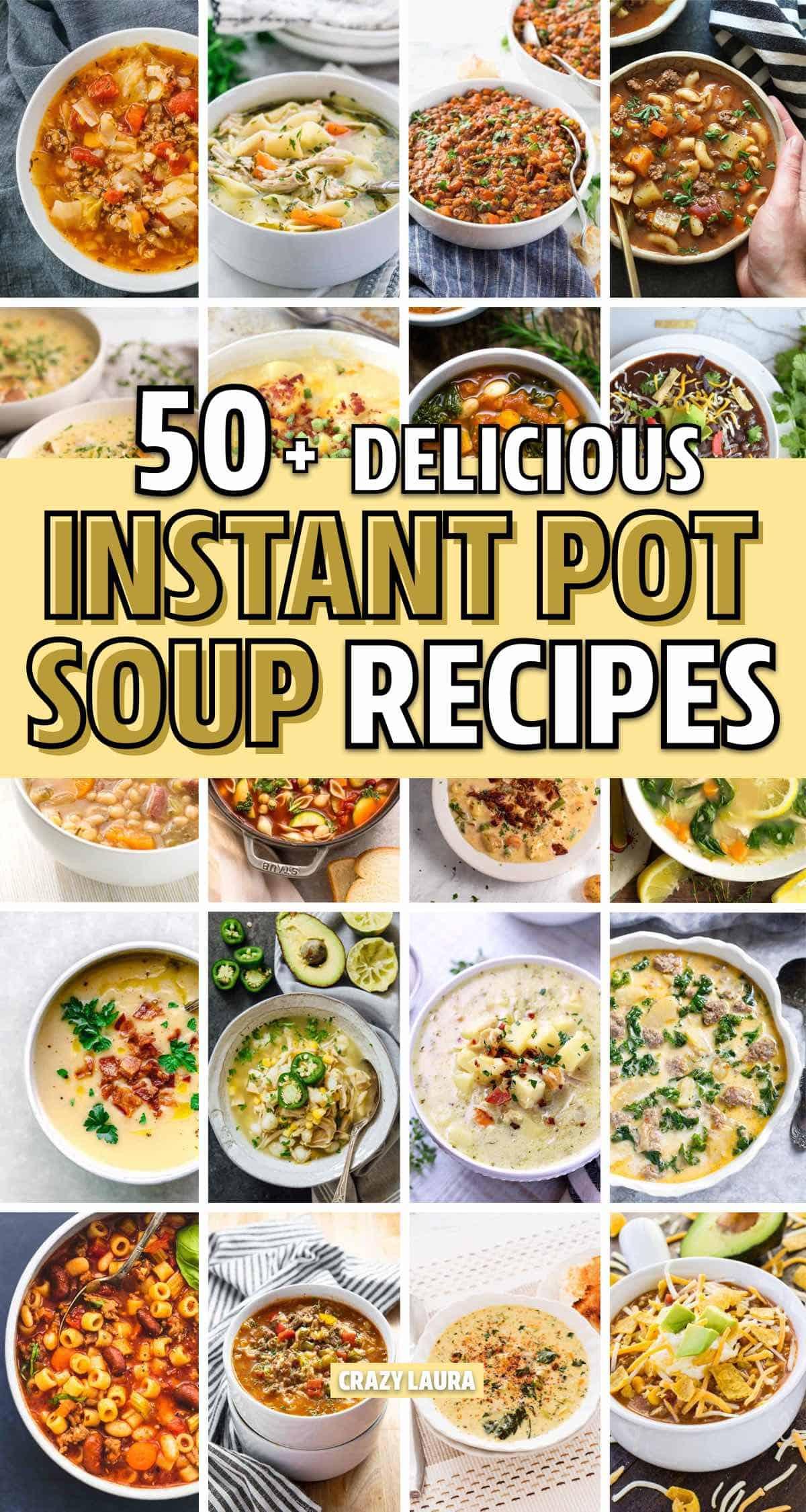 new insta pot recipe ideas