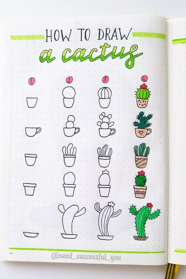 easy cactus doodles for bullet journal