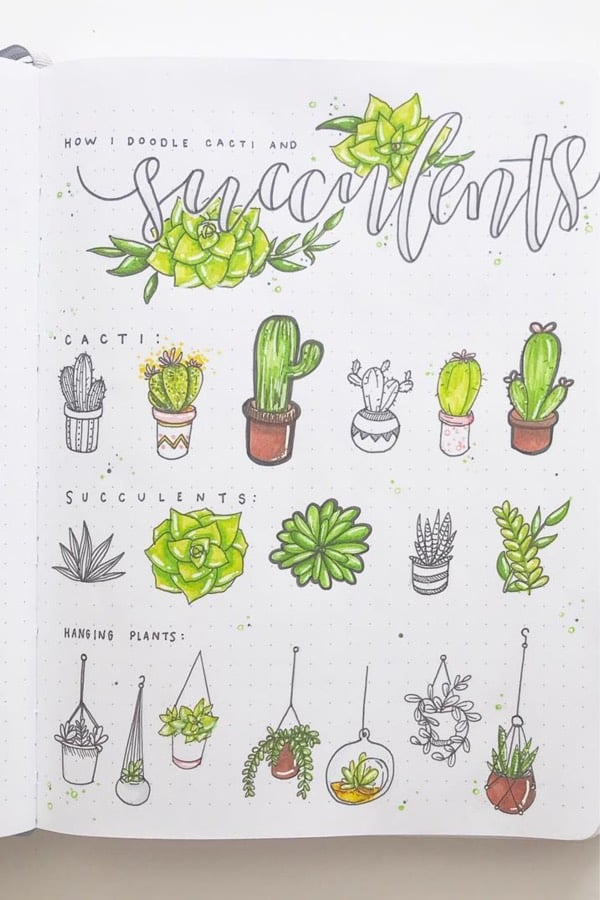 detailed succulent bujo doodle spread