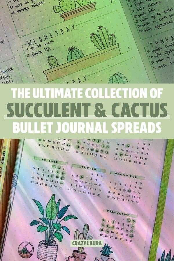 best ideas for cactus bujo spread