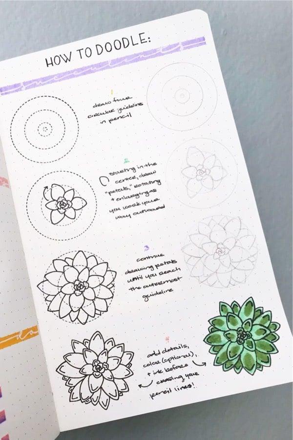 green succulent doodle tutorial