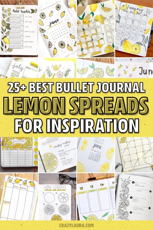best bullet journal lemon layout examples