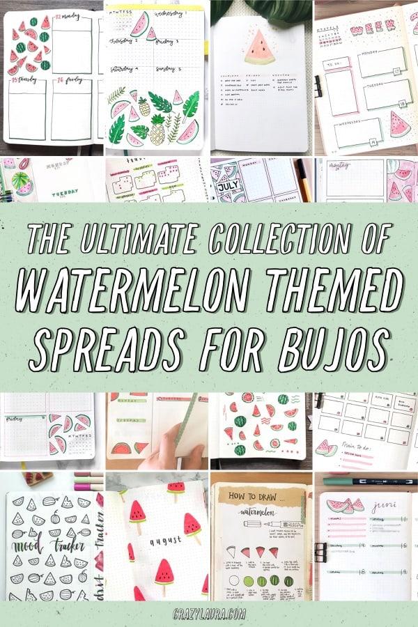 best watermelon themed bujo layouts