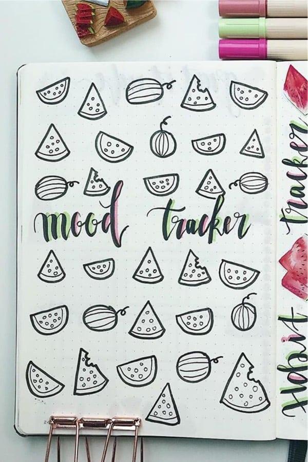 melon themed bujo tracker