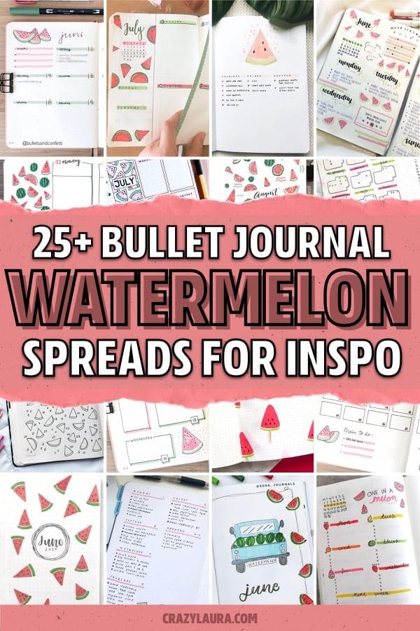 watermelon themed bujo examples