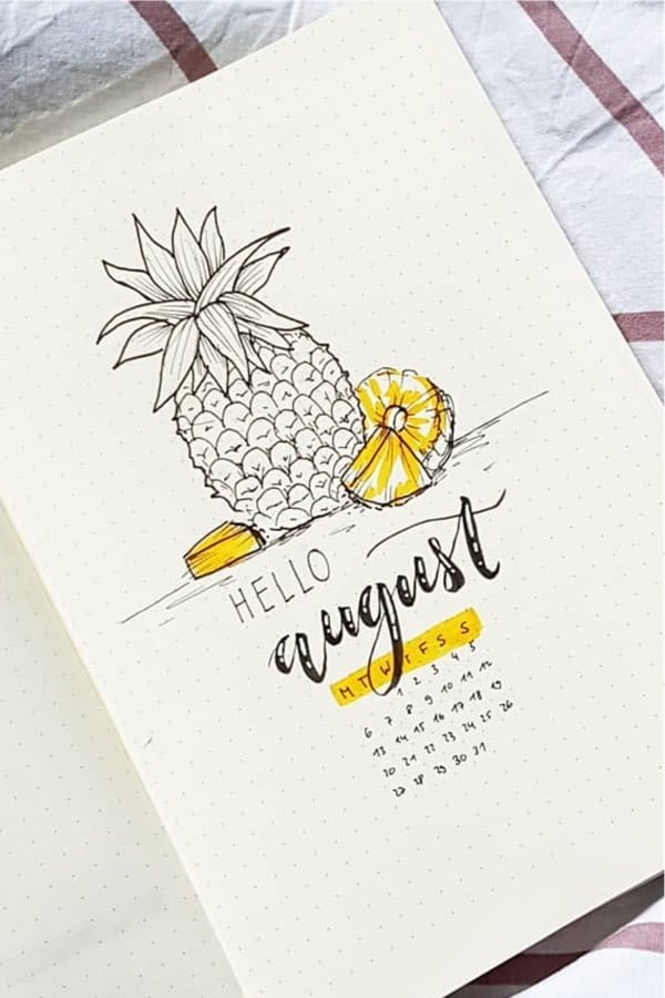 bujo cover spread with pineapple theme