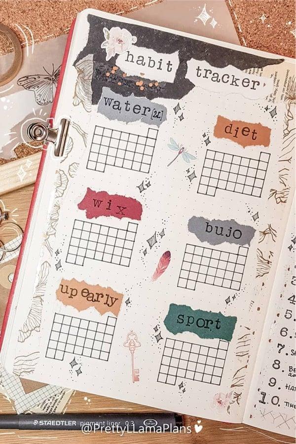 bullet journal scrapbook theme for habit tracker