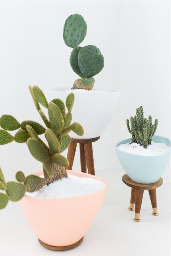 pastel colored diy cactus stands