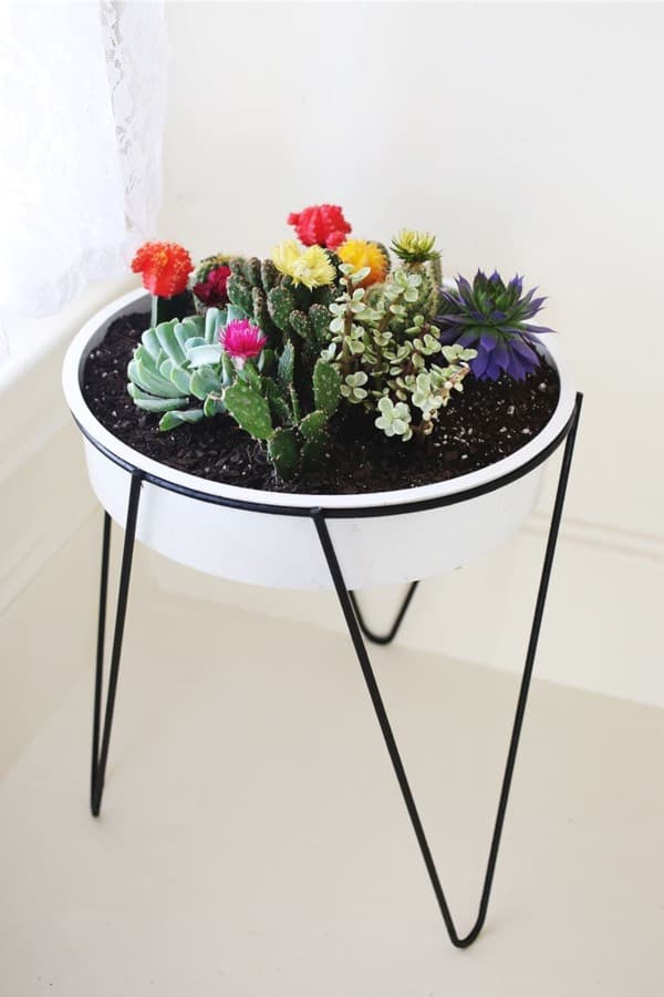 potted cactus holder diy tutorial