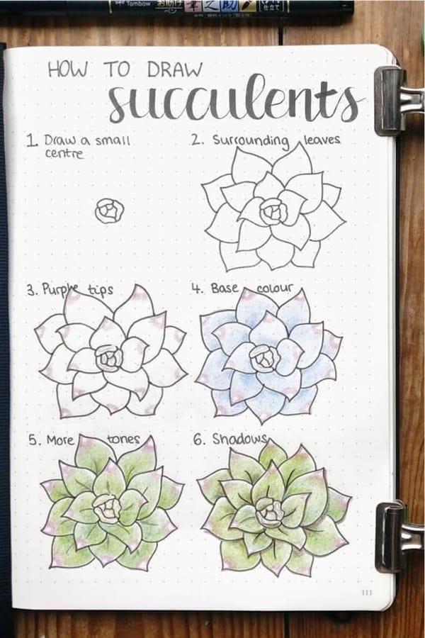 colorful bullet journal succulent doodle