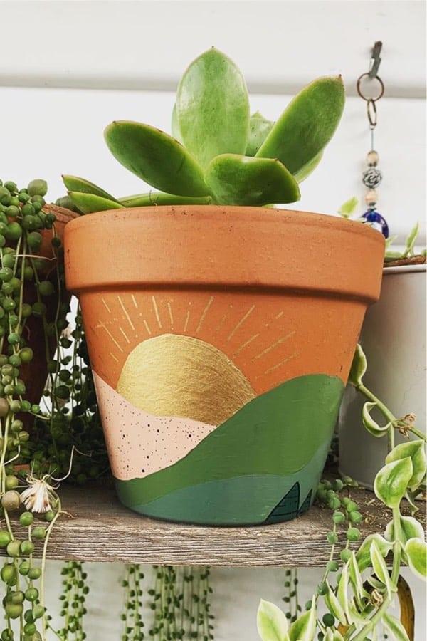 painted succulent pot design