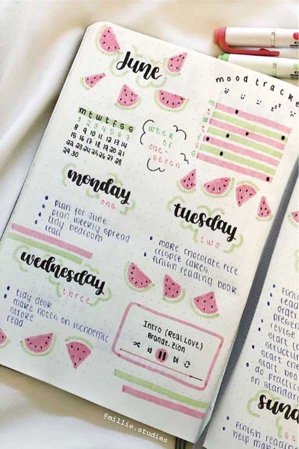 pink and green watermelon bujo page
