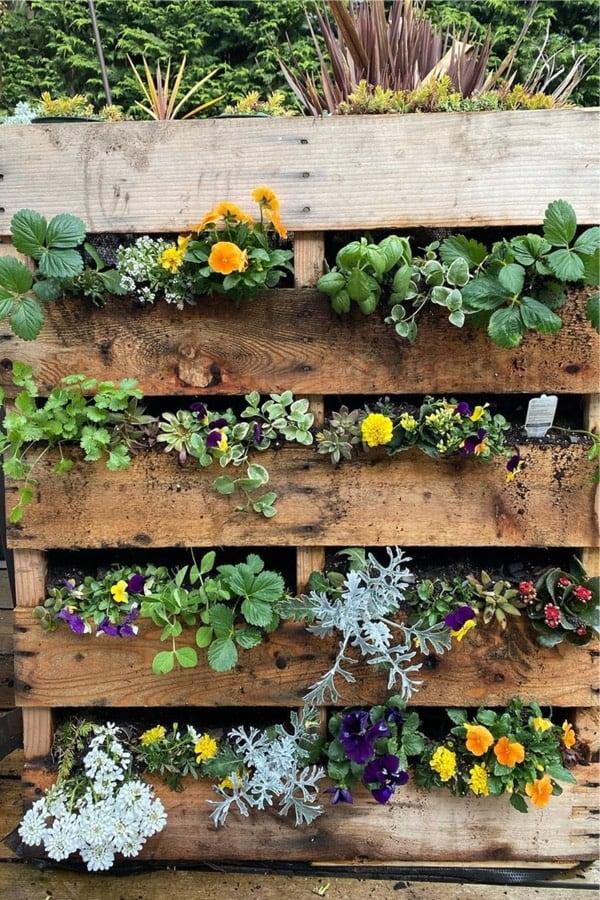 simple pallet garden examples