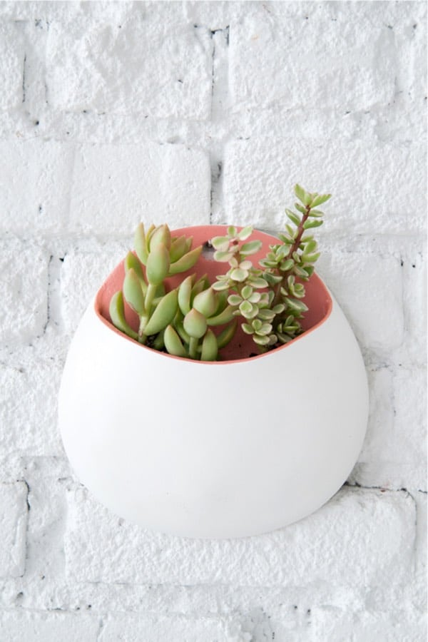 wall planter craft from air dry clay