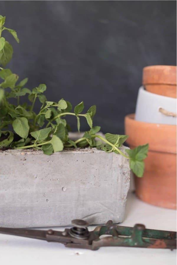quickcrete planter box to make at home