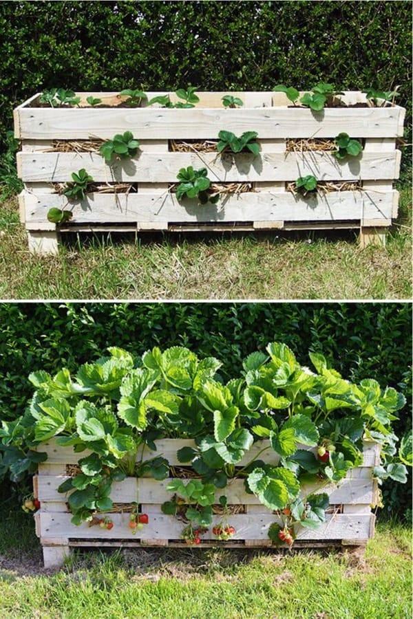 rustic pallet herb garden tutorial