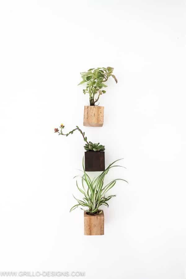 mini succulent planter diy craft example